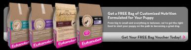 Get a FREE Bag of Eukanuba Puppy Food