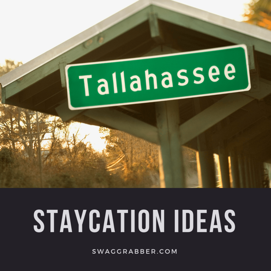 Staycation: Enjoying Tallahassee on a Budget