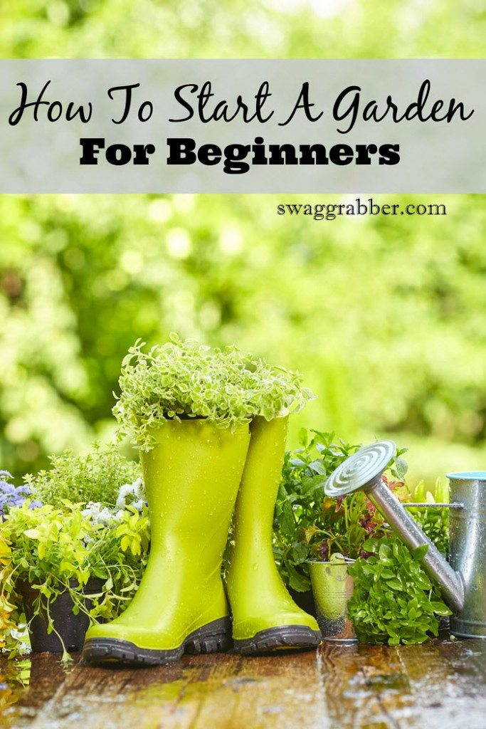 How To Start A Garden For Beginners