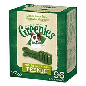 Greenies Dental Dog Treats only 15¢ Each Shipped **Stock Up Time**