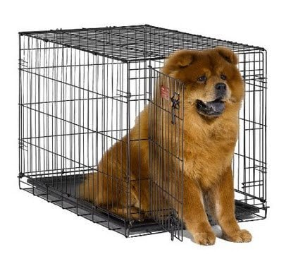 *HOT* MidWest iCrate Folding Metal Dog Crate $20.99 (Was $75)