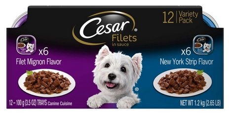 Cesar Filets Wet Dog Food 12-Pack Only $5.96 Shipped **Only 50¢ Per Tray**