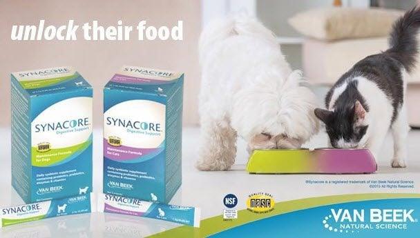 Free Sample of Synacore Pet Probiotics