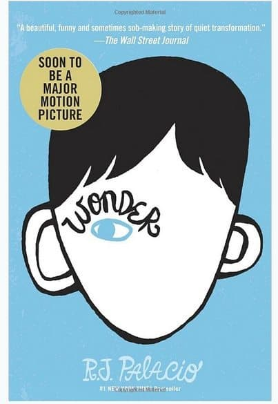 Wonder Hardcover Book Only $3.99 (Was $17) #1 New York Times Bestseller