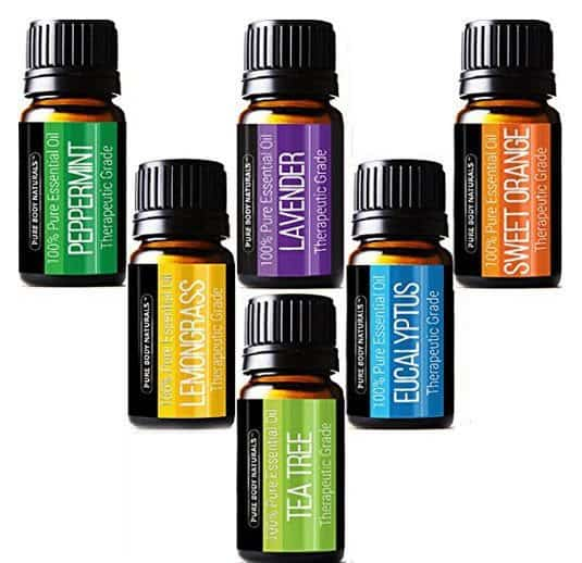 Pure Body Naturals Therapeutic Grade Top 6 Essential Aromatherapy Oils Set $8.85