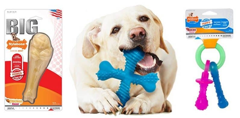 Up to 72% Off Nylabone Dog Toys & Treats **Today Only**