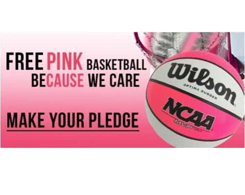 FREE Pink Wilson Basketball at RC Willey Stores