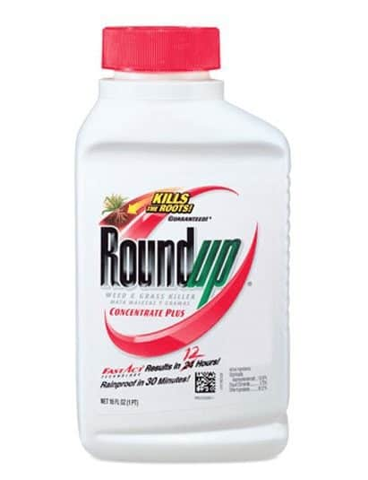 Roundup Weed and Grass Killer Concentrate Plus ONLY $5.00