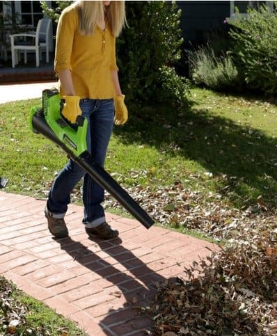 Up to 53% Off Leaf Blowers ~ Black & Decker ONLY $19.99