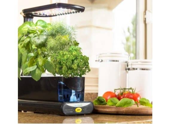 AeroGarden Sprout LED with Gourmet Herbs $49.95 (Was $99.98)