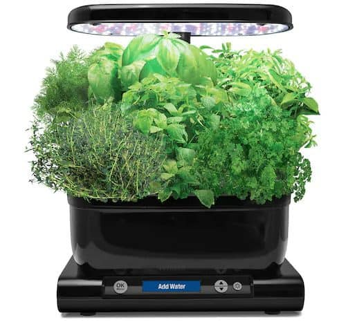 Miracle-Gro AeroGarden Harvest LED with Gourmet Herb Seed Pod Kit $69.99