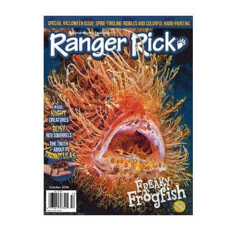 Subscription to Ranger Rick Only $9.25 Per Year