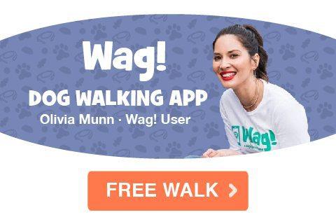 Got a Dog? Get a FREE Dog Walk from Wag!