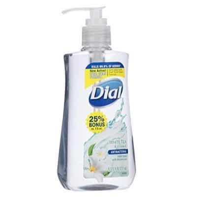 Dial White Tea/Vitamin E Liquid Hand Soap Only $1.86