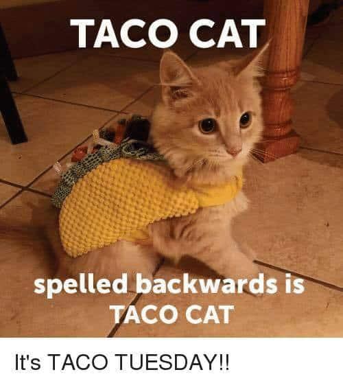 Funny: Taco Tuesday