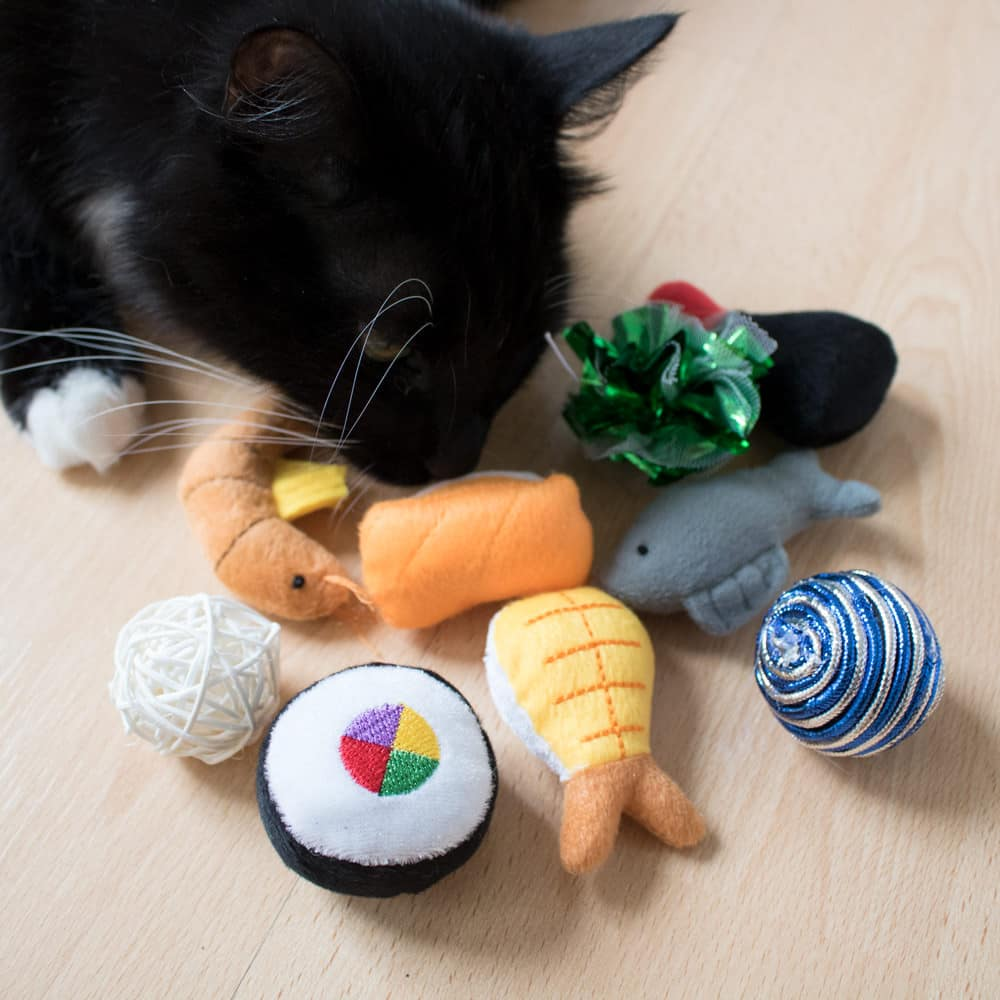 100% Free Cat Toy or Treat - Even Shipping is FREE!