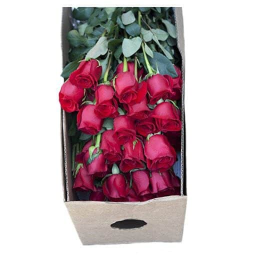 Got an Event Coming Up? 96 Red Farm-Fresh Long Stem Roses Only $66.51 Shipped