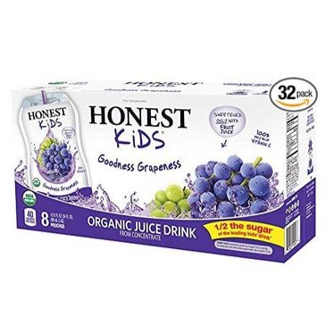 HONEST Kids Organic Goodness Grapeness Juice Drink 32-Pack Only $9