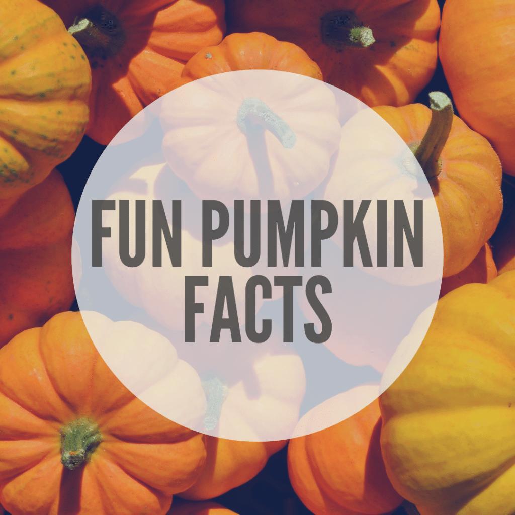 Fun Pumpkin Facts