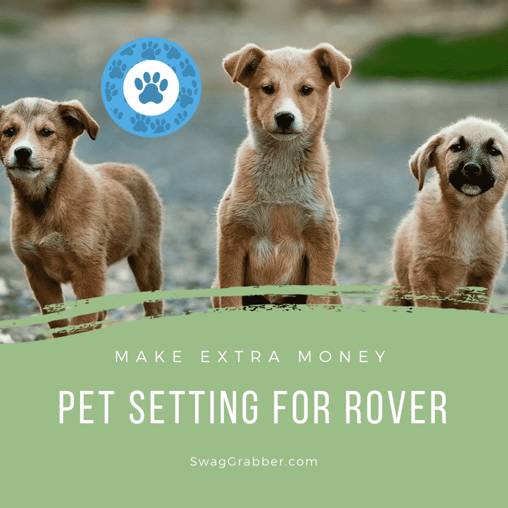 Make Extra Money Pet Setting for Rover