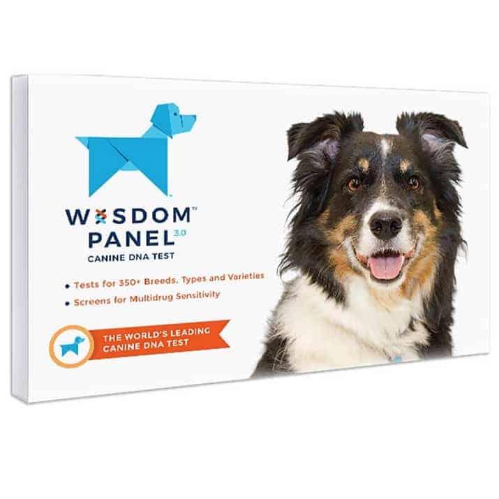 Wisdom Panel 3.0 Canine Breed Identification DNA Test Kit $49.99