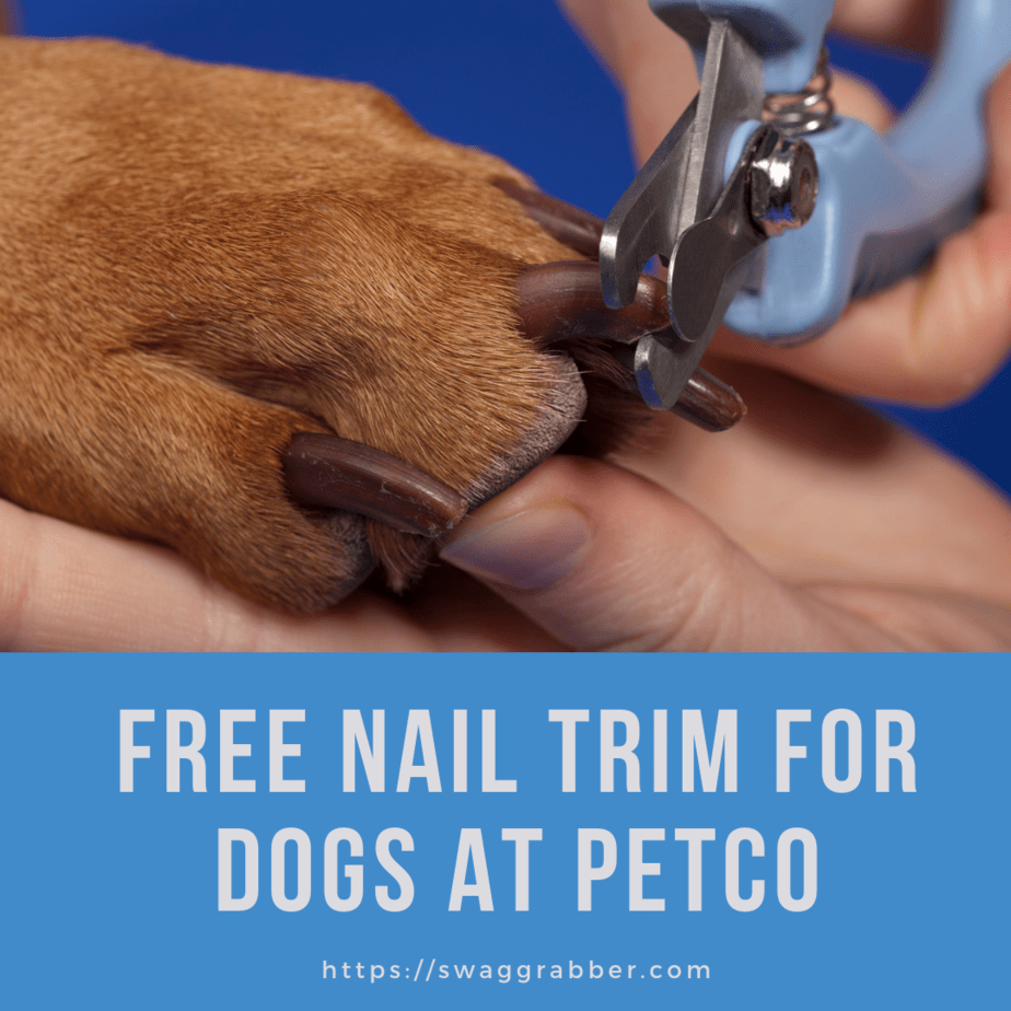 graphic about Petco Coupons in Store Printable referred to as Petco Printable Coupon: Absolutely free Nail Slim for Puppies SwagGrabber