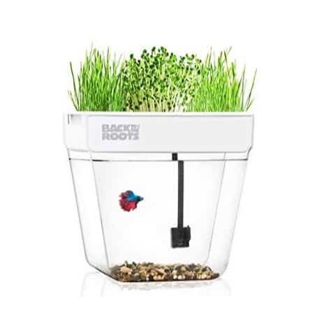 Back to the Roots Water Garden, Betta Fish Tank That Grows Plants $44.99 (Was $99.99)