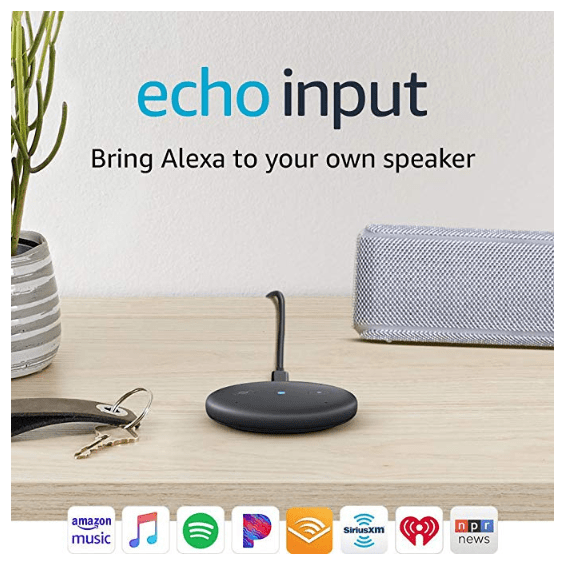 Amazon Echo Input ONLY $9.99 (Was $34.99)