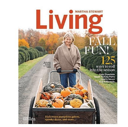 Amazon $3.75 Magazine Subscriptions: Southern Living, Readers Digest, & More