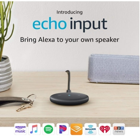 Echo Input Only $19.99 (Was $34.99)