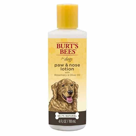 Burt's Bees for Dogs All-Natural Paw & Nose Lotion Only $2.71