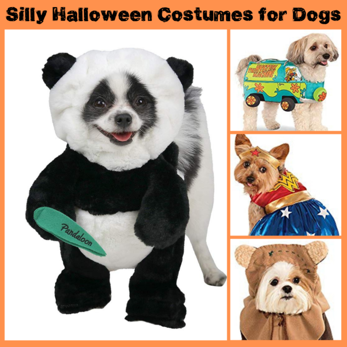 15+ Super Silly Halloween Costumes for Your Furbaby