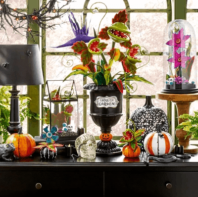 Target is Offering Halloween-Inspired Succulents For Only  Each
