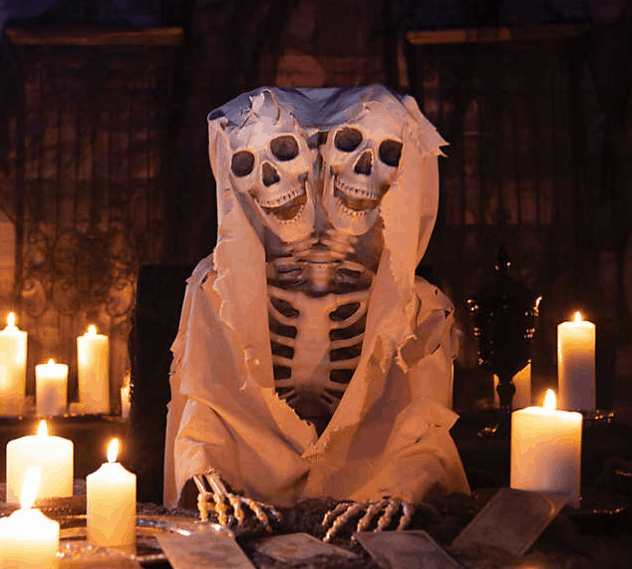 Unique Halloween Skeleton Decorations...You Probably Haven't Seen Before!