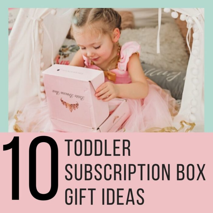TODDLER SUBSCRIPTION BOX GIFT IDEAS