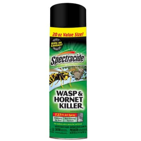 Spectracide Wasp & Hornet Killer Now  (Was .38)