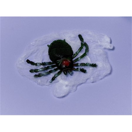 Giant Halloween Outdoor Spider Web with Big Spider Now $7.50 - Get TWO for $11.99