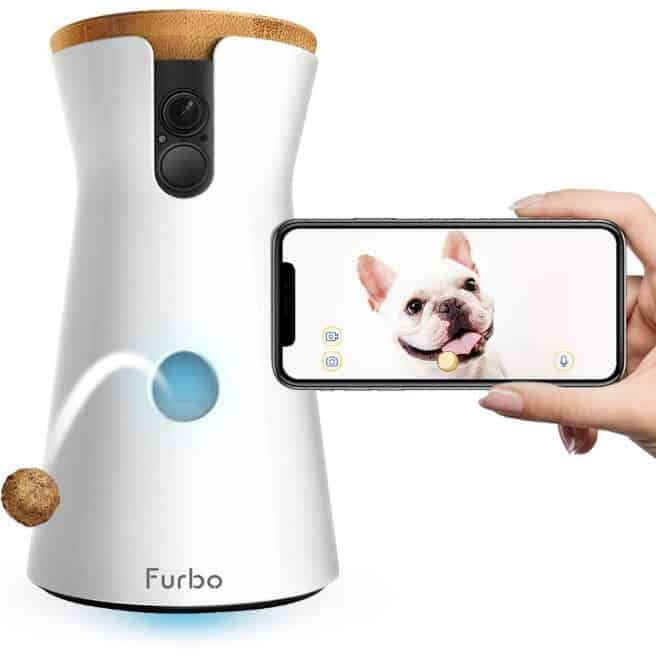 Possible Free Furbo Dog Camera for Medical Workers - 9 Value