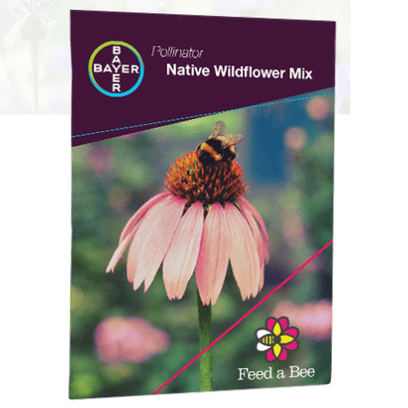 Free Wildflower Seeds from Bayer ?