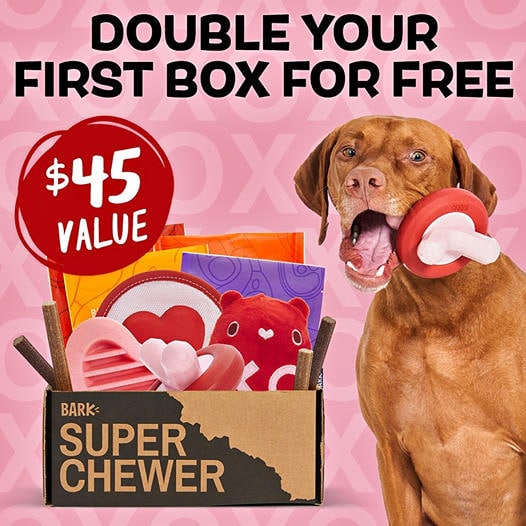 DOUBLE Your First Super Chewer Box - $45 Value