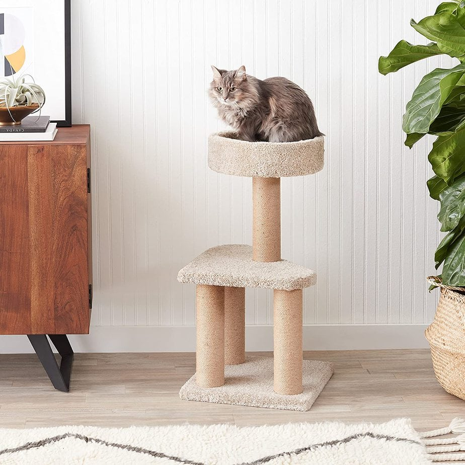 AmazonBasics Cat Condo Tree Tower with Scratching Post Now .39 (Was .50)
