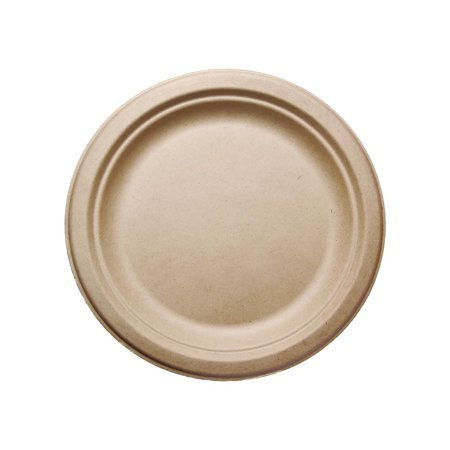 250 Perk Compostable Paper Plates Only $7.99 Shipped