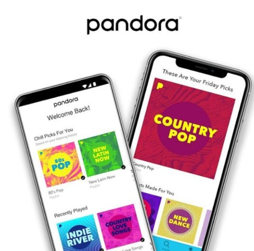12 Month Pandora Plus Music Subscription Only .99 at Best Buy