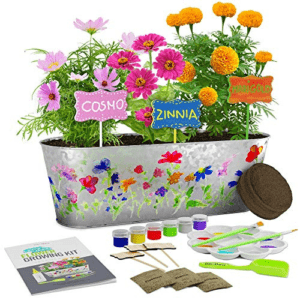 Paint & Plant Flower Growing Kit Now .19 (Was .99)