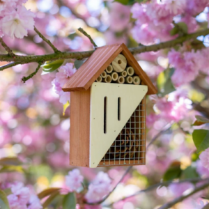 Bee & Butterfly Wooden Insect Home just .99 (Was .99)