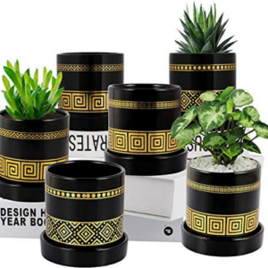 EFISPSS 3.2 inch Succulent Plant Pots 6 Pack Now .99 (Was .99)