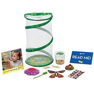 Insect Lore Butterfly Mini Garden Gift Set Now .99 (Was .99)
