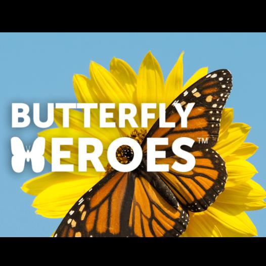butterfly heroes